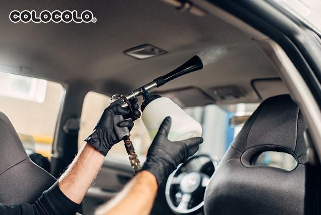 làm sạch trần xe ô tô